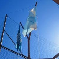banderas-naciones-unidas-argentina.jpg